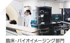 臨床・バイオイメージング部門