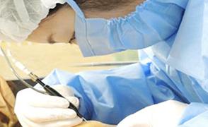 画像:涙道内視鏡を使用した実習の様子